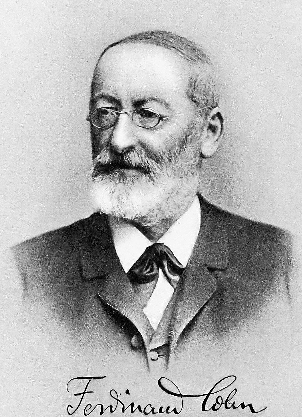 Фердинанд Юлиус Кон